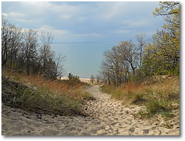 Dune at Indiana Dunes State Park